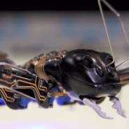 Las hormigas podrían ser el futuro de la impresión 3D